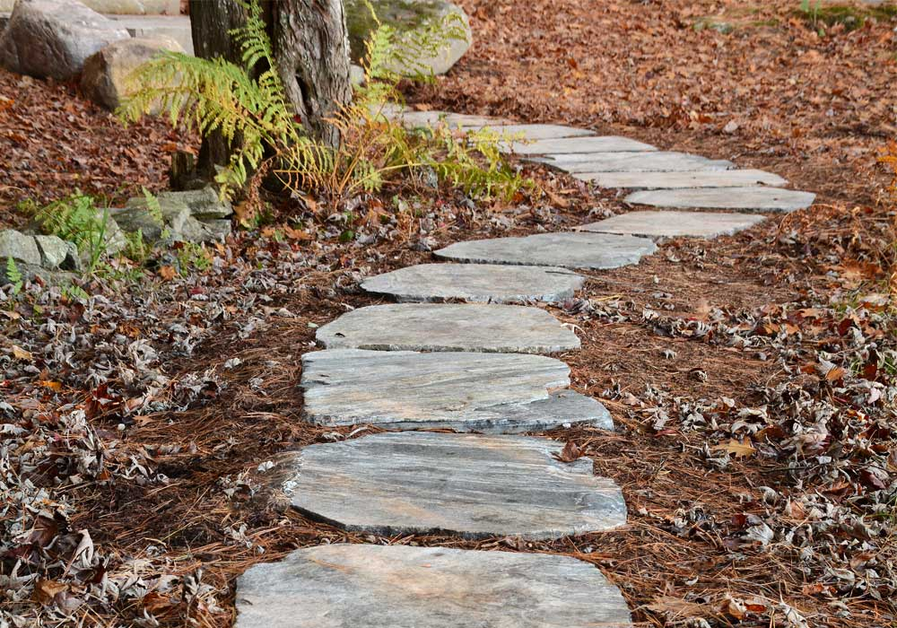 Meandering Stepping Stone Pathway